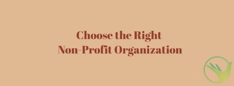 Choose the Right Non-Profit Organization