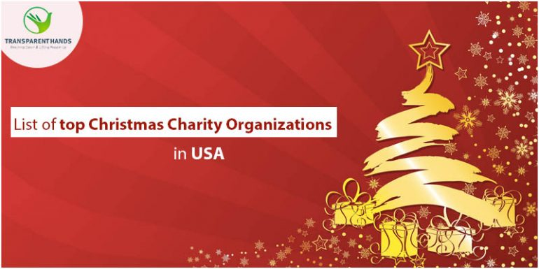 List of Top 15 Christmas Charity Organizations in USA