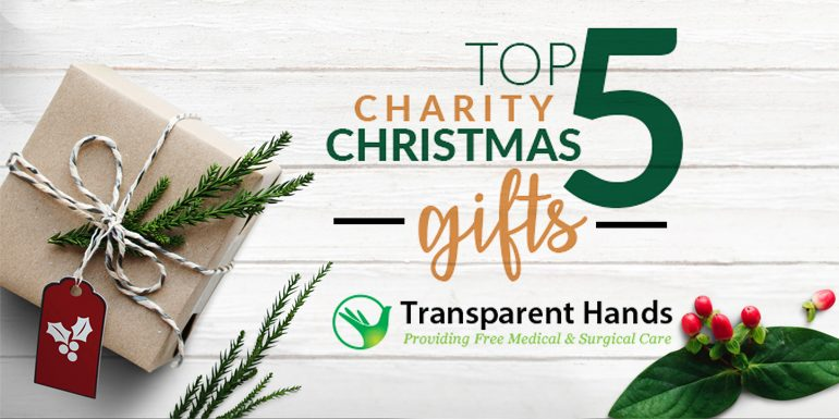 Top 5 Charity Christmas Gifts - Transparent Hands