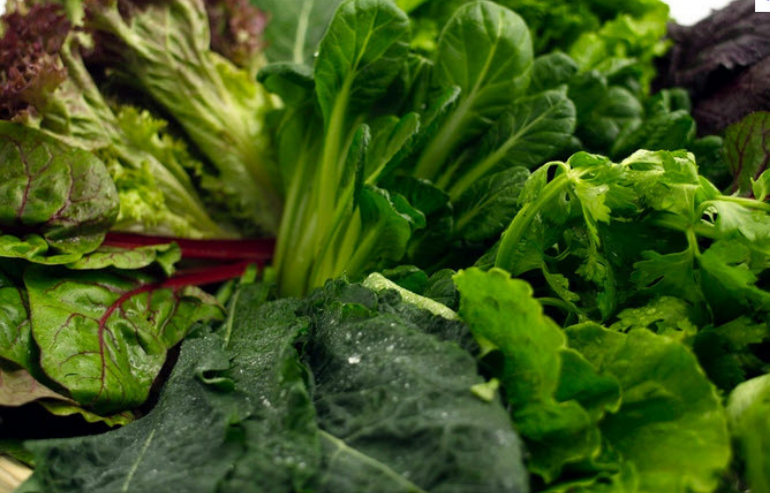 Leafy Greens -Nutrition for Kids: 5 Healthy Foods that Improve Dental Health